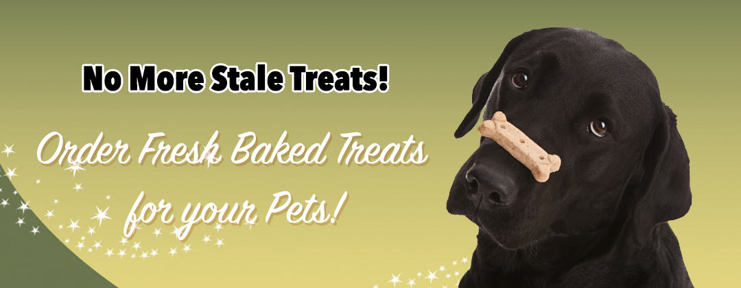 Fresh Pet Treats available at Paws and Claws Pet Bakery.